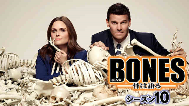 ボーンズ シーズン10