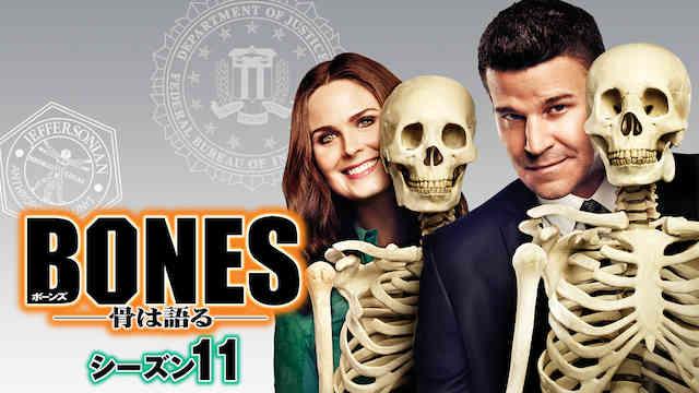 ボーンズ シーズン11