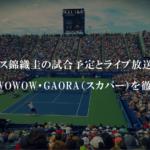 テニス錦織圭の試合予定とライブ放送は?Paravi(パラビ)・WOWOW・GAORA(スカパー)を徹底比較!