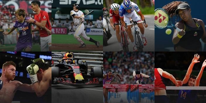 DAZN スポーツコンテンツ写真 集結