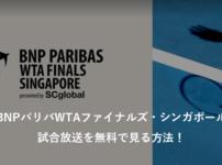 BNPパリバWTAファイナルズ・シンガポールの試合放送を無料で見る方法