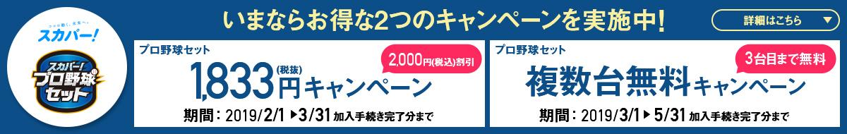 『スカパー!プロ野球セット』2000円割引中